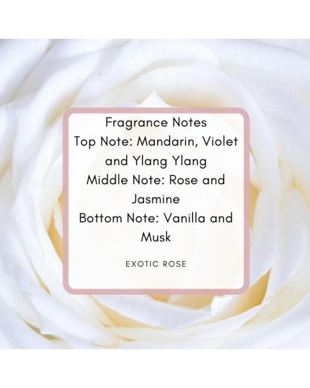 Champagne Exotic Rose Body Splash 260ml