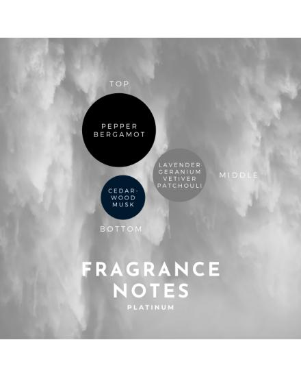 Temptation Platinum Eau De Parfum 30ml